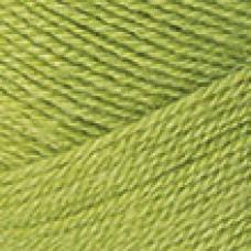 Nakolen (5) 23107 фисташковый